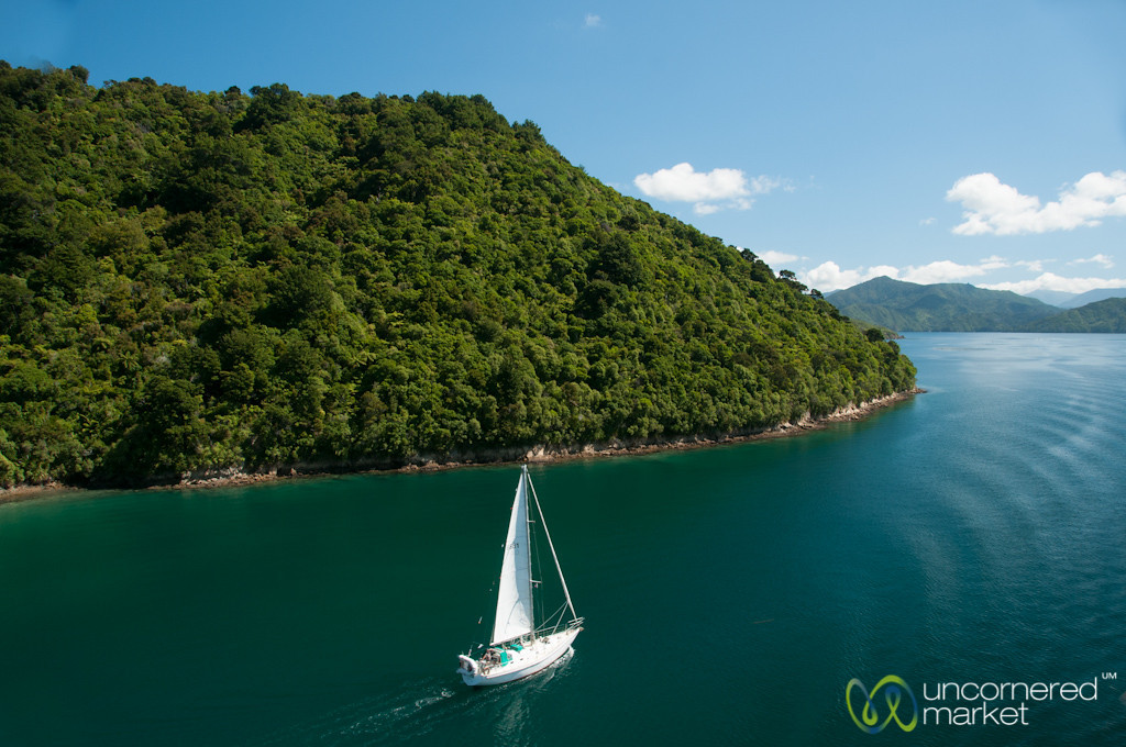 Sailboat in Queen Charlotte Sound - New Zealand