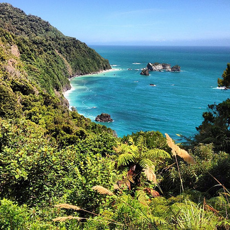 Take me away. This is where I want to be right now, somewhere warm, somewhere clear blue. Haast, South Island #newzealand