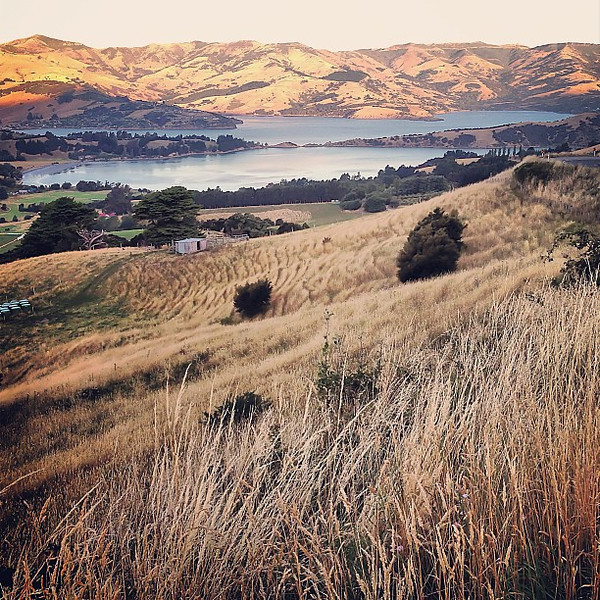 """Above Devauchelle along a road that ought to be called """"Bendywind"""" -- on the descent into Akaroa #newzealand"""