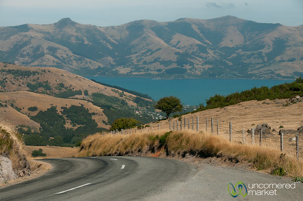 Road Trip Near Akaroa, New Zealand