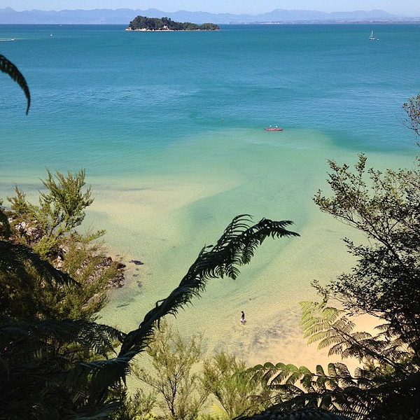 Somewhere in the vicinity of paradise. Today's #nofilter special from the heights of the Abel Tasman Track, South Island #newzealand
