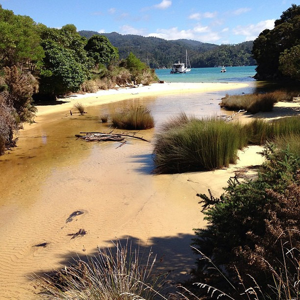 Pitt Head Trail, Abel Tasman --- today's New Zealand #nofilter special