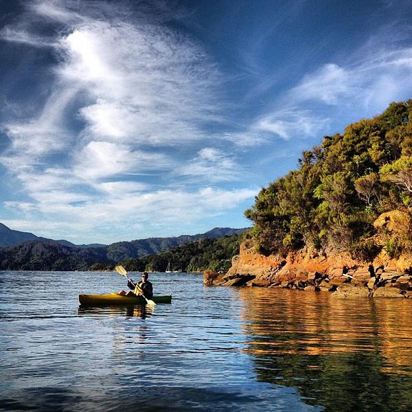 Audrey carves up Queen Charlotte Sound, Lochmara Bay. Beautiful stillness.