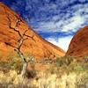 Kata-Juta<br /> Uluru NP, NT