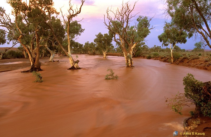 Stephens Creek - in flood<br /> Silverton, NSW<br /> 600-3-441