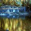 Cephissus Falls - Pine Valley<br /> Cradle Mtn. NP, Tasmania