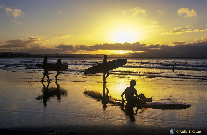 Surfboard Riders<br /> Byron Bay, NSW<br /> 600-3-550