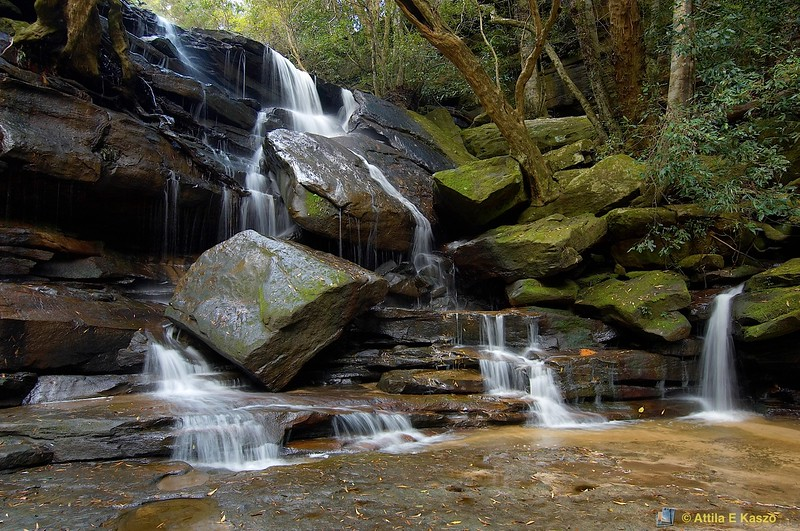 Bottom Falls<br /> Somersby Falls, Brisbane Water NP., Somersby, NSW