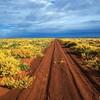 Gun Barrel Hwy <br /> Gibson Desert, WA