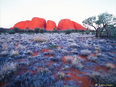 Kata-Juta (Olgas) - Sunset Uluru NP, N.T. 700-21-351