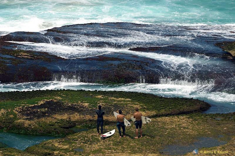 Surfers on Rocks<br /> Bronte, Sydney, NSW