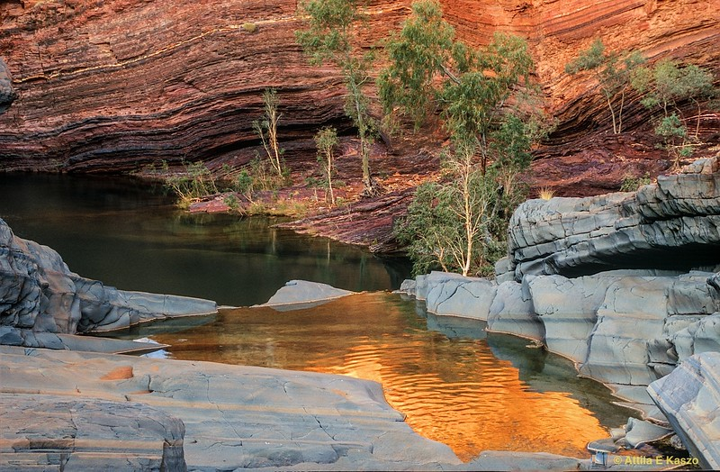 Pool - Hamersley Gorge<br /> Karijini NP, WA