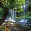 Russell Falls<br /> Mt Field NP, TAS<br /> 700-14-128