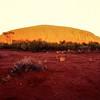 Uluru - Sunrise<br /> Uluru NP, NT
