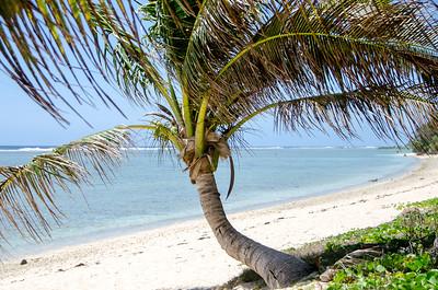 Beautiful beaches...