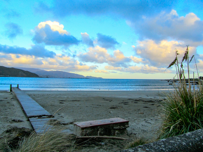 Lyall Bay in Wellington