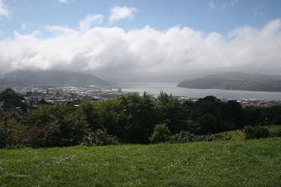 Overlooking Dunedin
