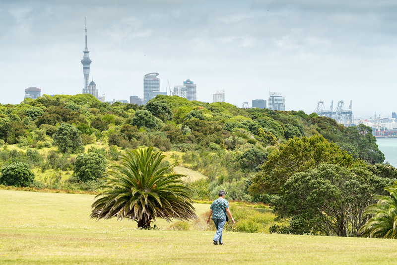 Auckland from MJ Savage Memorial Park.