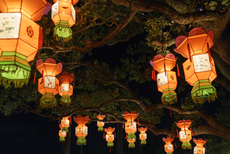 A visit to the Chinese Lantern Festival in the Auckland Domain.