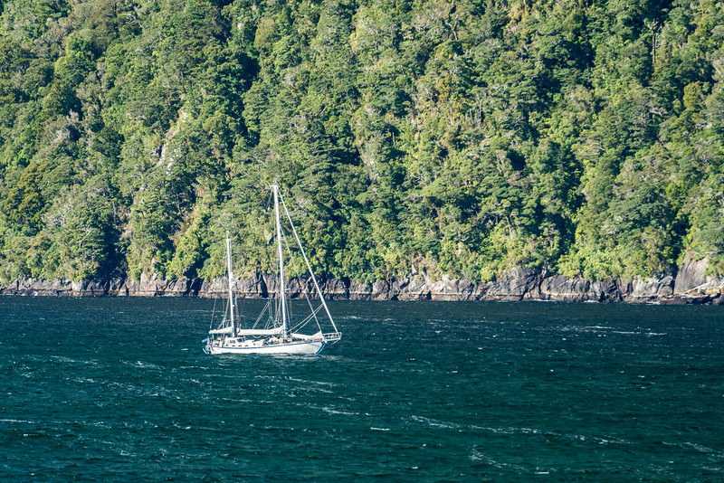 You've got to be a serious sailor to cruise in these waters!