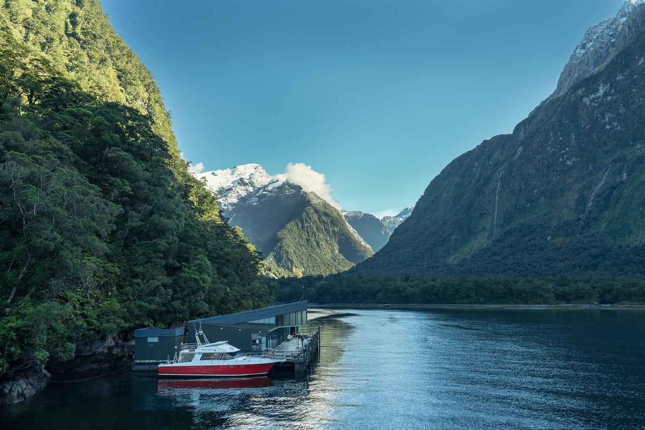 The Milford Sound Underwater Observatory at Harrison Cove.