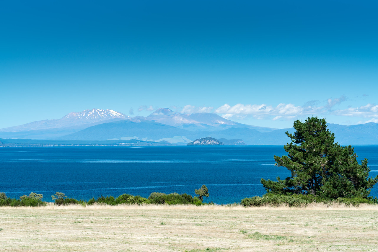 Along the shore of Lake Taupo.