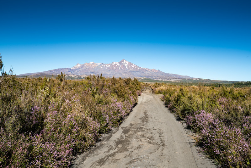 Mount Ruapehu.