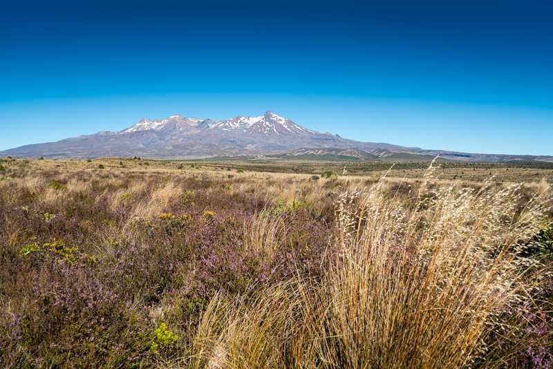 Mt Ruapehu from the Desert Road.