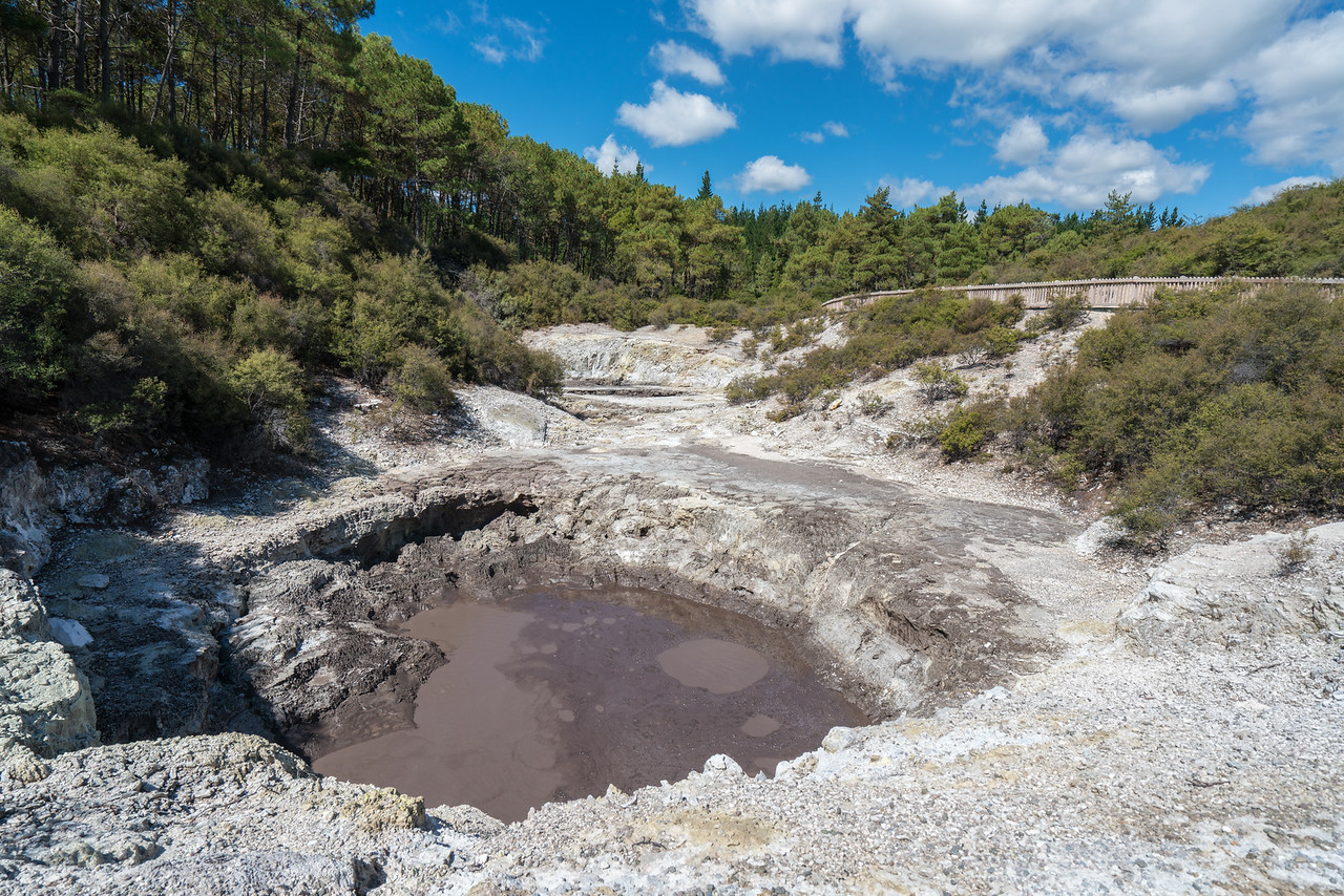 A hot mud pool at Wai-O-Tapu.