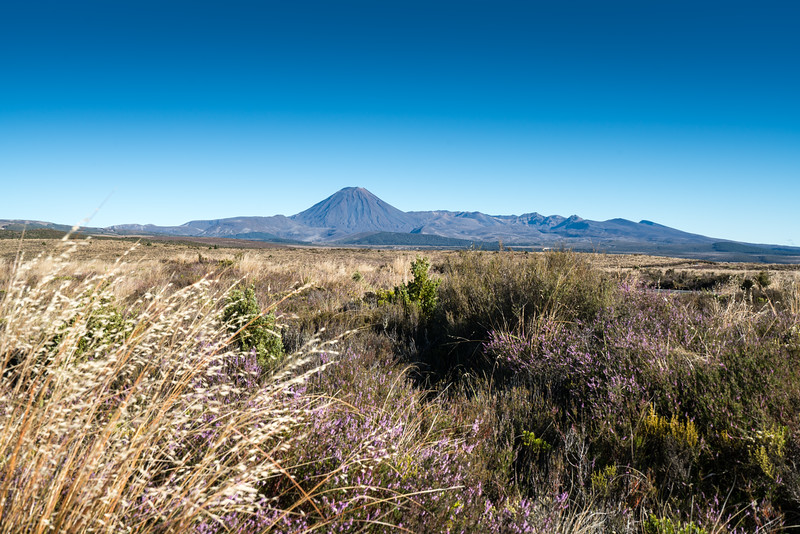 Mount Ngauruhoe from the Desert Road.