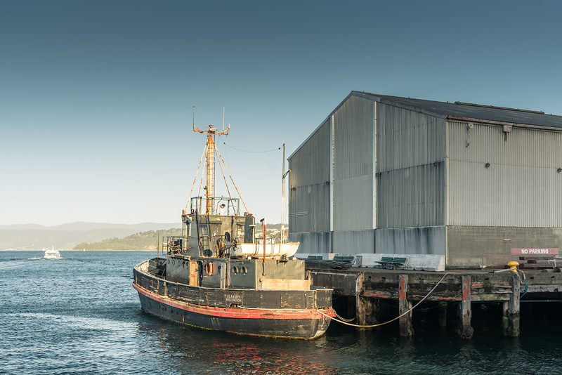 The Sealion, Wellington.