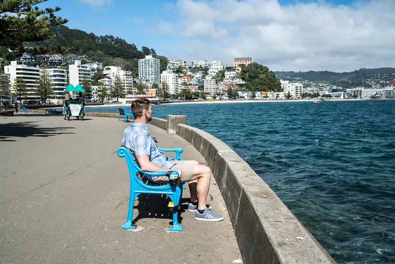 Matthew enjoying the view at Oriental Bay.
