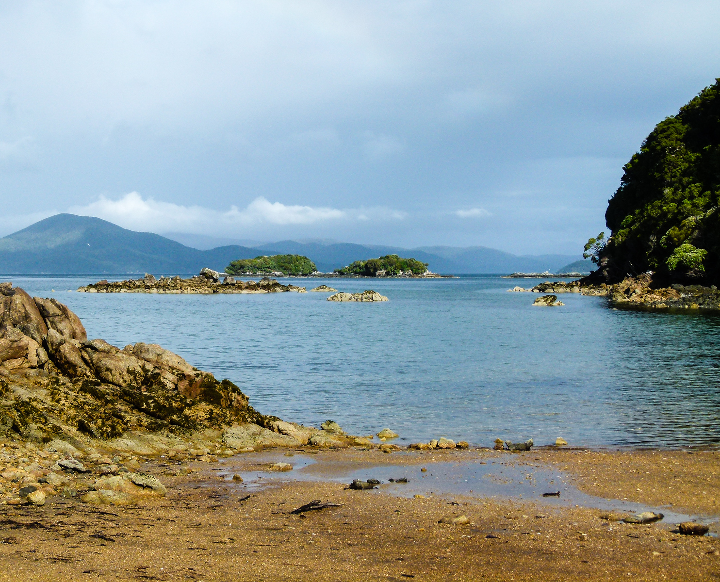 Golden-colored sand edges the blue bay water on an Ulva Island beach.