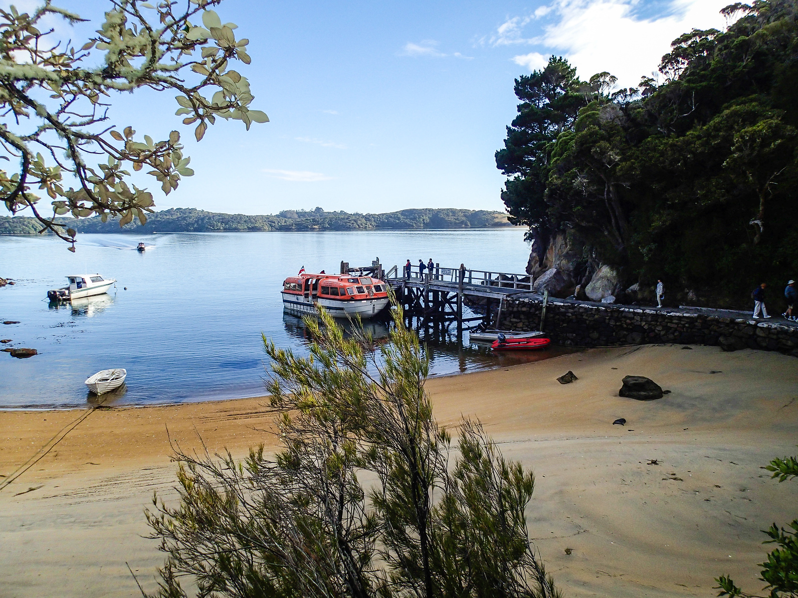 Cruise tender pulled up at the dock on Ulva Island, New Zealand.