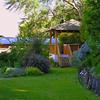 The gardens at Wanaka Springs Lodge