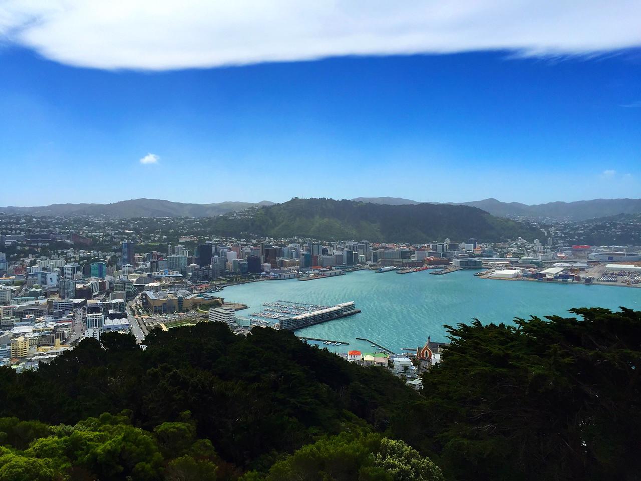 Wellington, New Zealand from Mount Victoria