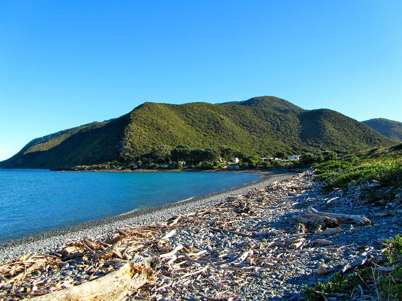 Kapiti Island beach