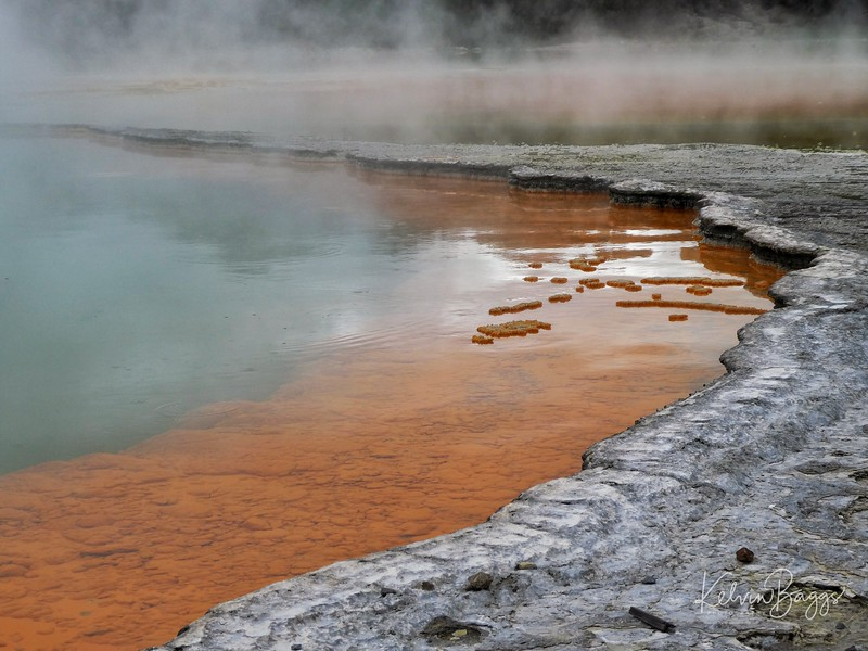Wai-O-Tapu Thermal Wonderland: geothermal landscape