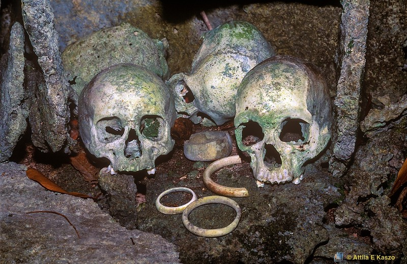 Human Skulls <br /> Skull Island, Vonavona Lagoon, Solomon Is.