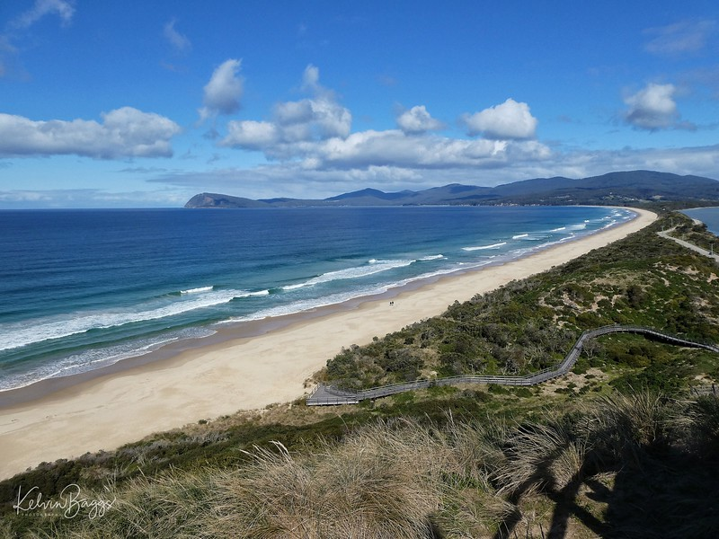 The Neck Lookout, Bruny Island