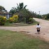 Boy - Streetscene, Eua Is., Tonga