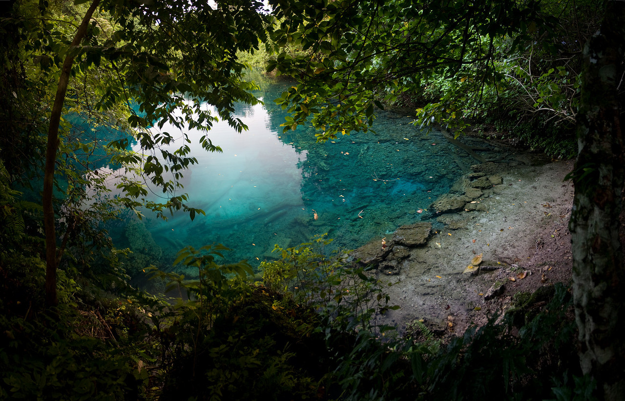 One of the many 'blue holes' found on the island.<br /> <br /> This is a 5 shot panorama stitched together in CS3.<br /> <br /> Location: Santo island, Vanuatu<br /> <br /> Lens used: 17-55mm f2.8 IS