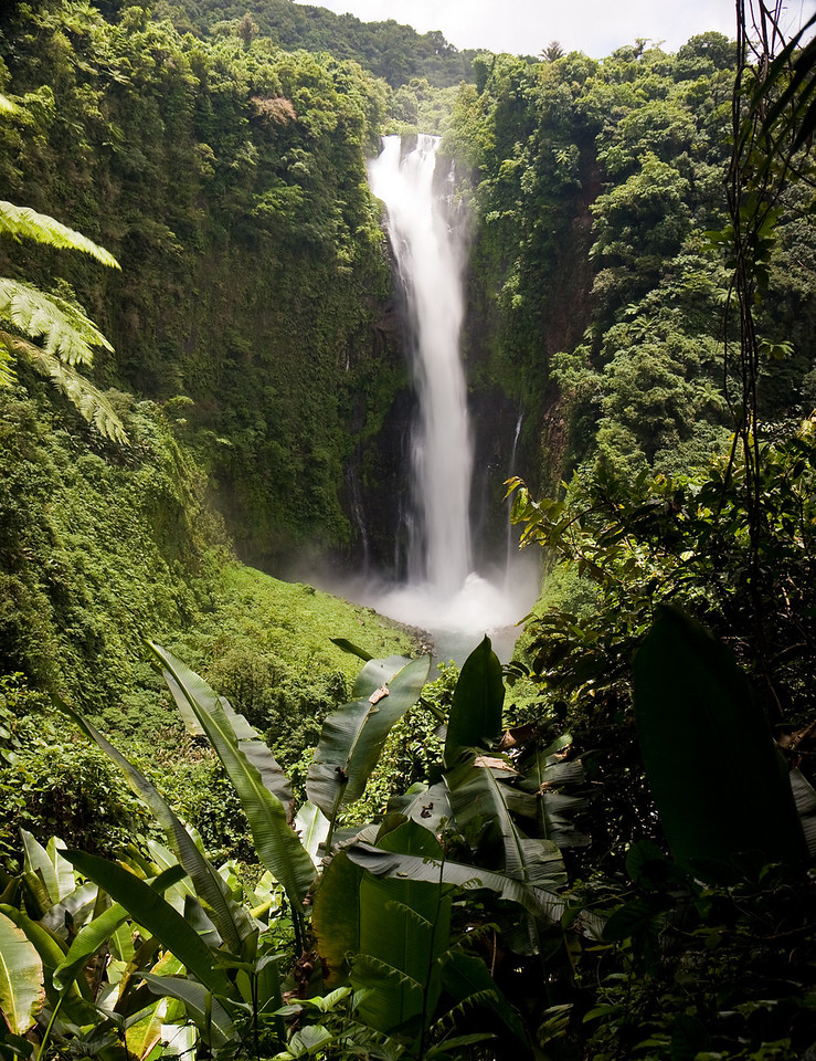 At 120 meters, Siri falls is the tallest cascade in the country.<br /> <br /> Location: Gaua island, Vanuatu<br /> <br /> Lens used: 17-55mm f2.8 IS w/Vari-ND Duo filter