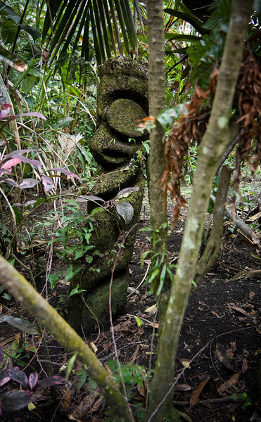 An old, traditional black palm sculpture stands in the jungle.<br /> <br /> Location: Ambrym island, Vanuatu<br /> <br /> Lens used: 17-55mm f2.8 IS