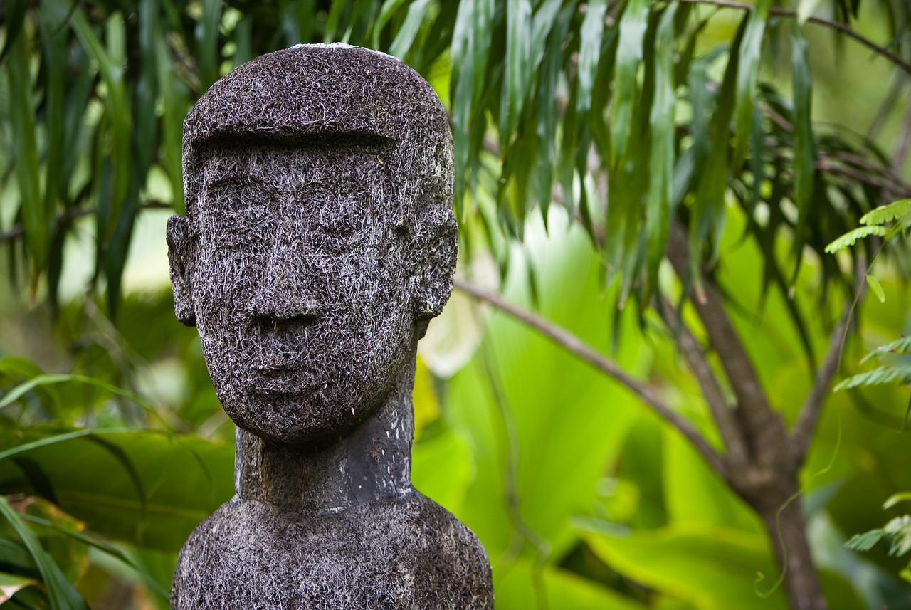 A non-traditional black palm sculpture in a hotel's grounds.<br /> <br /> Location: Santo island, Vanuatu<br /> <br /> Lens used: 70-200mm f2.8 IS