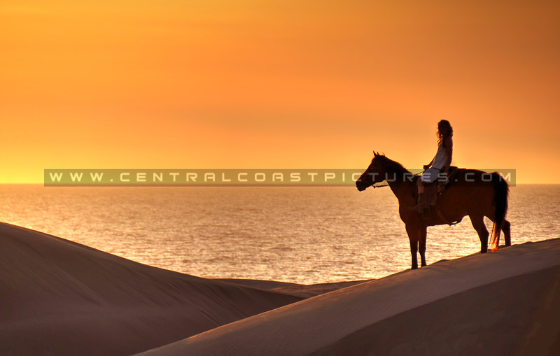 horse-dunes_8041