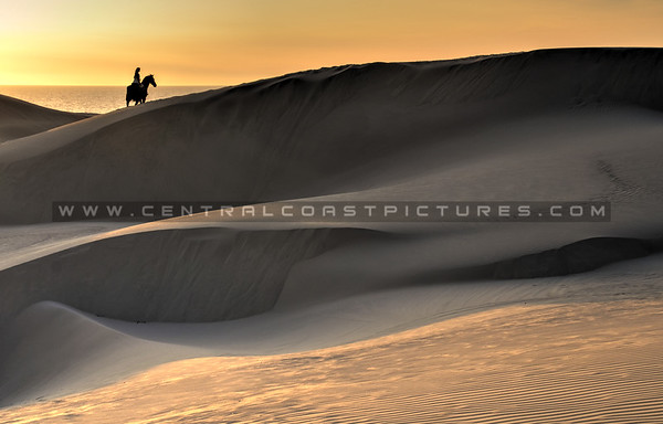 horse-dunes_8047