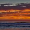 oceano sunset 6541