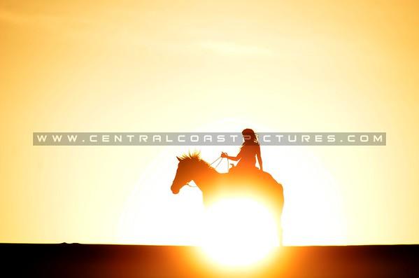 dunes-horse_7965
