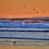 waves 8562